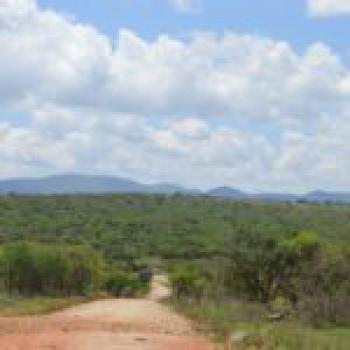 20.1 Acres Plot of Land, South Coast, Bamburi, Mombasa, Land for Sale