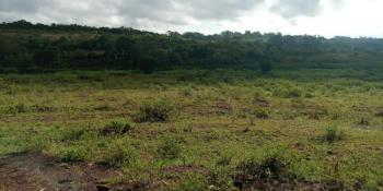 10 Acres, Mangu Road,, Thika, Kiambu, Land for Sale