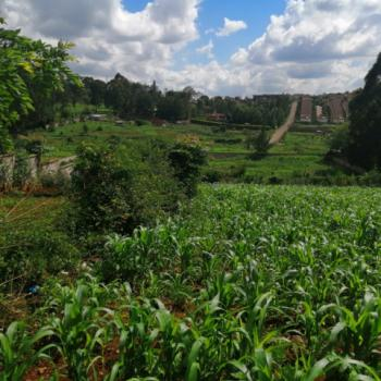 Half Acre Land, Loresho, Westlands, Nairobi, Land for Sale