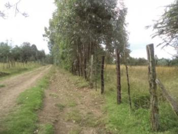10 Acres of Prime Land, Kiabonyoru, Nyandarua, Land for Sale