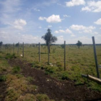Land, Kitengela, Kajiado, Land for Sale
