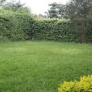 4 Bedroomed Maisonette, Fourways Junction, Kikuyu, Kiambu, Townhouse for Rent