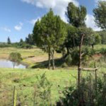 Land, Kinungi, Naivasha East, Nakuru, Land for Sale