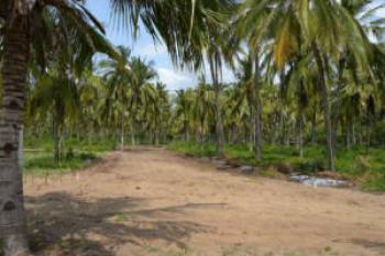 Pk Ocean Estate(plots), Malindi Town, Kilifi, Land for Sale