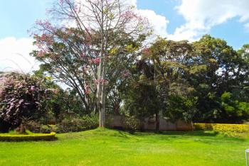 Contemporary Home in The Best Development, Langata Road,, Ongata Rongai, Kajiado, Detached Duplex for Rent