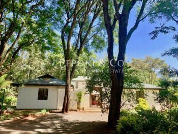 Charming Courtyard Style Home, Kibo Lane, Karen, Nairobi, Detached Duplex for Rent