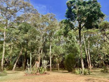 Home in Mwitu Estate, Kipkaren, Nandi, Detached Bungalow for Rent