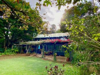 Charming Little House, Ndege Road, Karen, Nairobi, Detached Duplex for Rent