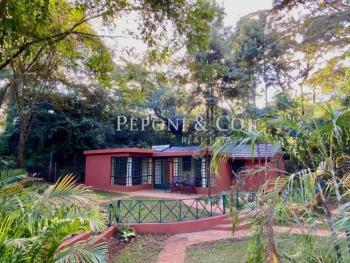 Executive One Bedroom Cottage, Windy Ridge Road, Kipkaren, Nandi, Detached Duplex for Rent