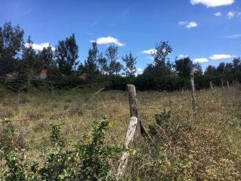 1/2 Acre Plot of Land, Nkoroi, Ongata Rongai, Kajiado, Land for Sale