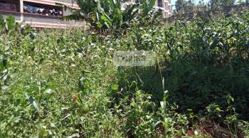 Thindigua Plot, Thika, Kiambu, Residential Land for Sale