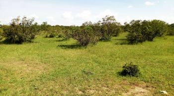 Maasai Mara Plot, Maasai Mara, Imara Daima , Nairobi, Land for Sale