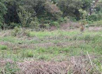Prime 0.5 Acre Residential Plot - Mushroom Gardens - Kiambu Rd., Kiambu Road, Township C, Kiambu, Residential Land for Sale