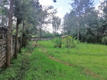Quarter Acre Plot in Kerarapon Drive, Kerarapon Drive, Ngong, Kajiado, Residential Land for Sale
