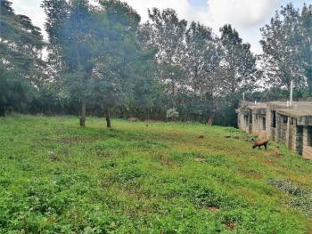 Commercial 100 X 100 Plot in Ngong Township, Ngong Town, Ngong, Kajiado, Commercial Land for Sale