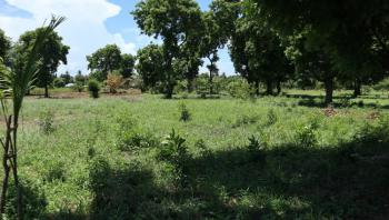 1/4 Acre Piece of Land in a Controlled Development, Mtwapa, Mtwapa, Kilifi, Residential Land for Sale