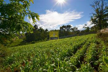 0.5 Acre, Loresho, Westlands, Nairobi, Land for Sale