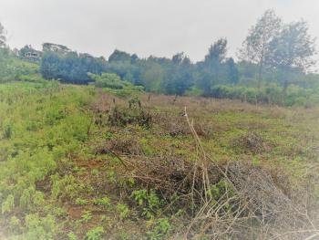 Plots  in Lemiso Road Ngong, Ngong, Kajiado, Residential Land for Sale