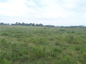 1/8 an Acre, 0ld Naivasha Behind Keroche Factory., Viwandani (naivasha), Nakuru, Residential Land for Sale