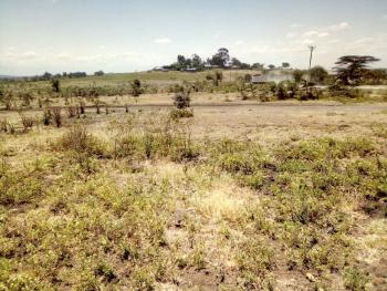 Prime 1/4 Acre Plots., Kiserian, Narumoru, Ongata Rongai, Kajiado, Land for Sale
