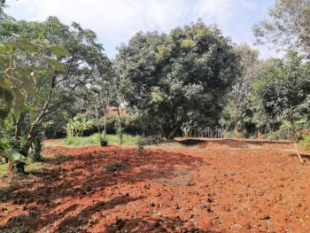 Half Acre Land in Kuwinda Road Karen, Kuwinda Road, Karen, Nairobi, Mixed-use Land for Sale